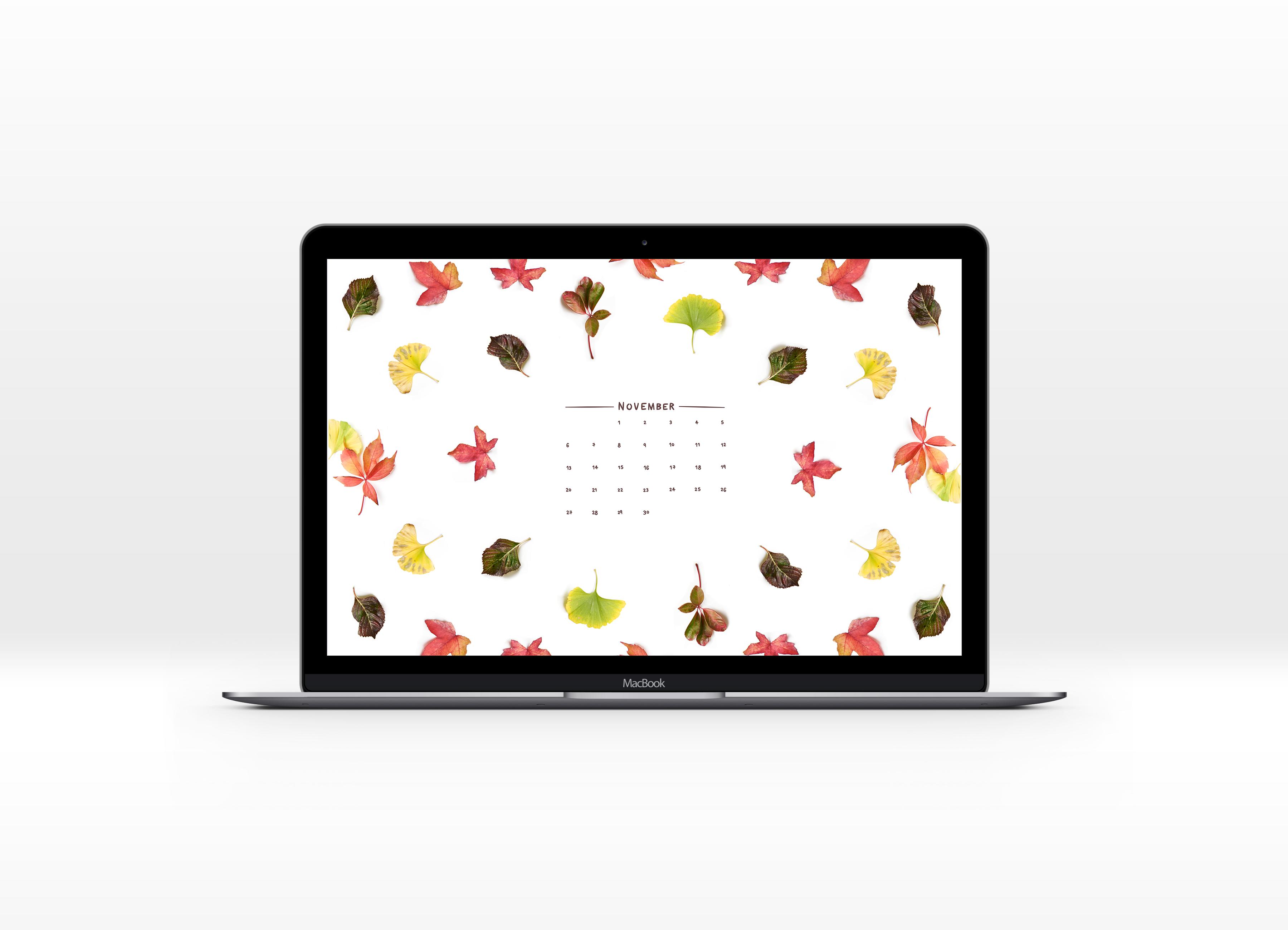 FREE downloadable november desktop background wallpaper