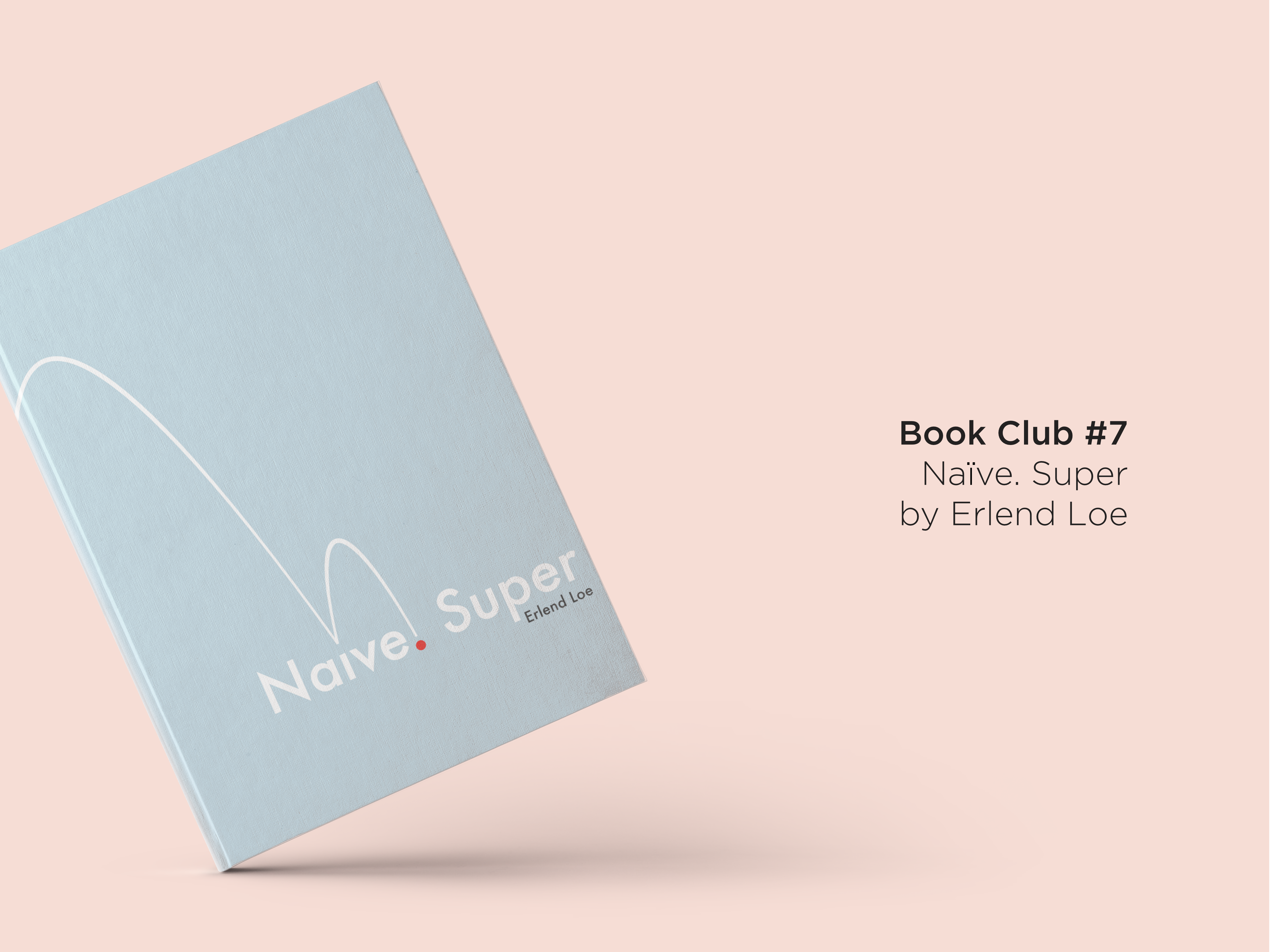 Naive Super by Erlend Loe Book Club Review